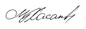 Пример штампа на ручке 09